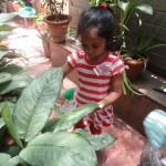 Enrichment- gardening (1)