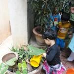 Enrichment- gardening (3)